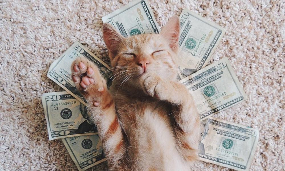 Деньги рисунки смешные